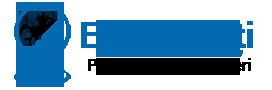 Logo E-Radauti